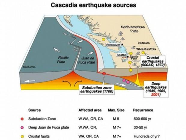 Zemljotre u SAD