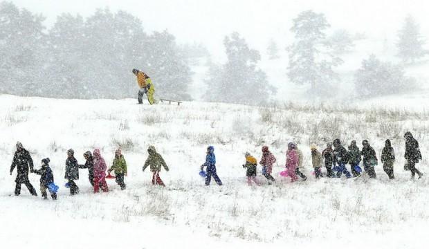 zlat sneg 12. 11. 3