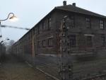 ЗАПАД ПОТИРЕ ИСТОРИЈУ: Ослободиоци нису позвани на јубилеј Аушвица – зато што су Руси