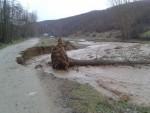 ВАНРЕДНО СТАЊЕ ЗБОГ ПОПЛАВА: Вода чупа дрвеће, села без струје у Врању