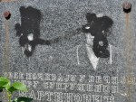 УЖАС НА КОСОВУ: Оскрнављена два српска гробља, затрпана смећем па запаљена