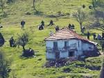 ДРАГИШИЋ: Србија је више база за исламске терористе, а мање мета