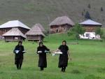 БОГАТСТВО У КОРОВУ: У Србији необрадјено 600.000 хектара ораница!