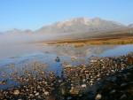У ОДРАГ ПОЉЕ ЂЕ СЕ ЖИВИ ОД НЕВОЉЕ: Сињајевином, тражећи последњу црногорску вирџину