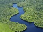 АМАЗОНИЈА И КОНГО: На свијету постоје само двије нетакнуте шуме