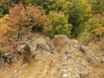 KРАЉЕВО: Нико не брине о каменоj шуми староj милион година