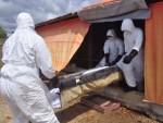 НИГЕРИЈА: Мистериозна болест убија у року од 24 сата