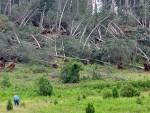 150 КИЛОМЕТАРА НА САТ: Оркански ветрови погодили север Европе