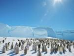 МОСКВА: Руси крећу на Антарктик после 30 година
