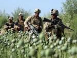 И НАСТАВЉА ДА РАСТЕ: Од агресије САД на Авганистан производња дроге скочила 50 пута