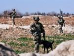 ЖИВАНОВ: NATO више није савез, већ пука дивизија окупатора и колаборациониста-квислинга