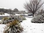РИЈЕТКА ПОЈАВА: Пао снијег у Аустралији