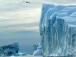 ДВАНАЕСТ КВАДРАТНИХ КИЛОМЕТАРА: Одвојио се велики комад леда на Гренланду