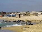 КРЕНУЛИ СУ НА ПУТ НАДЕ: Обалу Либије преплавила беживотна тијела миграната