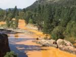 ЉУДСКА ГРЕШКА: Шта је офарбало реку у сенф боју