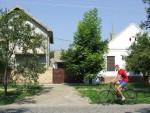 ДРЖАВЉАНИ ЕМИРАТА У ВОЈВОДИНИ: Арапи купују куће по Бачкој