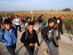 КРИЗА У МАЂАРСКОЈ: Ухапшено 367 избеглица; Понта: Бојим се да ће Мађари пуцати на мигранте