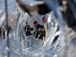 ГДЕ ЈЕ ГРАНИЦА: Хрватска интервентна полиција почиње скидати жицу на граници са Словенијом