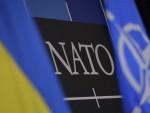 ДЕМАНТУЈУ ТУРСКУ: Неке чланице НАТО-а сматрају да је Су-24 оборен изнад Сирије