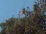 ПЕСКОВ: Авион се налазио изнад Сирије