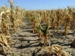 АУСТРАЛИЈА: Природне катастрофе нанијеле штету од 1,5 билион долара