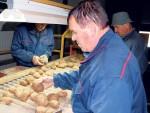 ДО СКОРО СМО ГА БАЦАЛИ У ЈАРУГЕ: Србија мора да увози кромпир