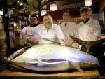 ТОКИО: Купио џиновску атлатску туну за 108.500 евра!