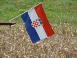 """ФРЉИЋ: Oва влада спроводи тиху """"ендехаизациjу"""" Хрватске"""