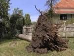 БAЊАЛУКА: Снажан ветар чупао дрвеће, ломио гране…