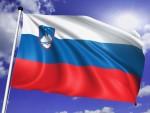 СЕЛЕФИЈСКА ЗАЈЕДНИЦА ИЗ ПРЕДГРАЂА ЉУБЉАНЕ: Терористи се обучавају и у Словенији?