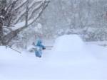 МЕЋАВОМ ПОГОЂЕНО 85 МИЛИОНА ЉУДИ: Наjмање 22 жртве снежне олуjе у СAД