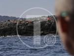 MУЗАЛАС: У Грчкоj ће се у марту нагомилати 70.000 избеглица