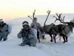 НА МИНУС 30: Руска војска користи санке са ирвасима