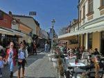 ЂОКОВИЋ, ТЕСЛА, ЦЕЦА, КАРЛЕУША: Ко су узори младима у Србији