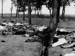 ЕРДОГАН ЋЕ БИТИ БЕСАН: Хоће ли Немачка прогласити Турску геноцидном творевином