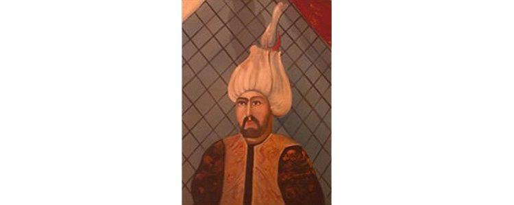 Бајица Бајо Ненадић, Мехмед паша Соколовић 1506-1579