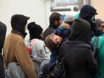KРИВОКАПИЋ: Притисак миграната из правца Бугарске