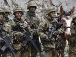 ВИМЕР: Не дамо више немачку децу за америчке ратове