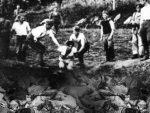 ДОДИК: Јасеновац – страшно мјесто страдања и геноцида над Србима