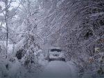 СРБИЈА: Ледени дани се настављају, обустављена пловидба на Дунаву и Сави