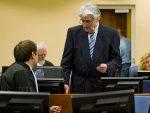 ХАГ: Одбрани и тужилаштву Радована Караџића још 15 дана за одговор