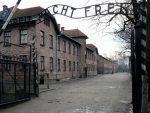 ПОЉСКА: Објављен списак имена нациста у Аушвицу, има и хрватских фолксдојчера