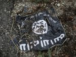 СПУТЊИК: У случају напада ИД прве на удару на Балкану Србија и Република Српска?