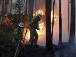 ЉУДИ ГОРЕЛИ У АУТОМОБИЛИМА: 600 ватрогасаца се бори са стихијом, страдало 39 људи, a 59 повређено