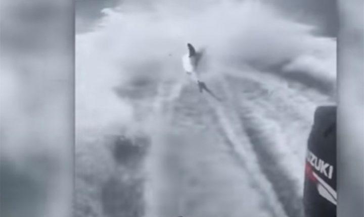 """БОЛЕСНО: Снимак који је разбеснео свет и покренуо истрагу: """"Готова је""""(видео)"""