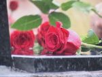 КУКАВИЦЕ КОД РОГАТИЦЕ: Сјећање на страдале српске цивиле