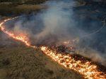 СТРАХ СЕ ШИРИ: Терористи ће палити шуме и тровати храну