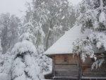ПОРАНИО ПРВИ СНЕГ: На Тари 30 сантиметара снега, забелело се на Златару, Златибору…