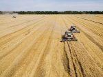 РТ: Русија потискује САД као пољопривредну суперсилу