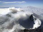 НАУЧНИЦИ: Антарктик је некад био шума!